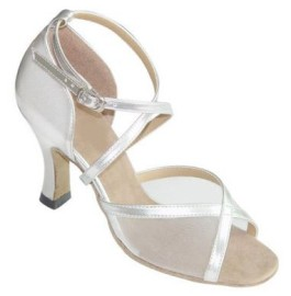 Samantha Silver and Mesh Latin or Ballroom Dance Shoe